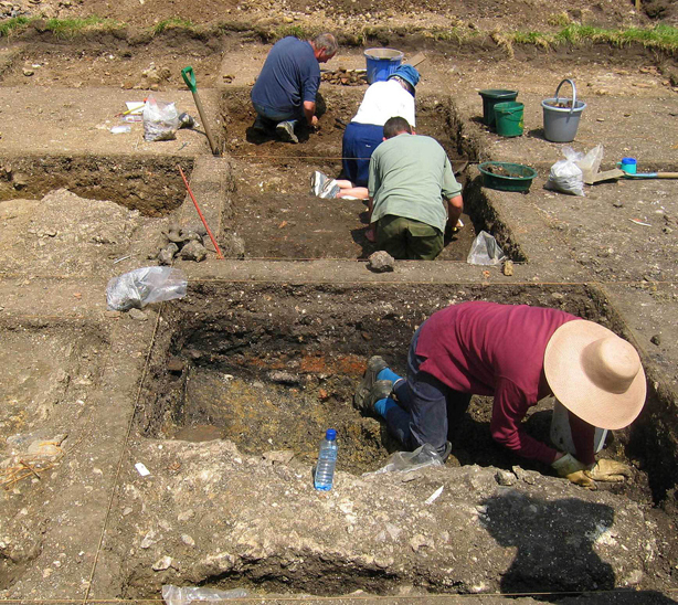 Volunteer archaeologists digging like professionnals